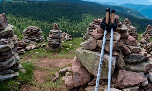 Choosing hiking poles the right way in 2021